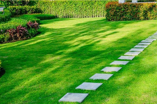 landscaping in thrissur